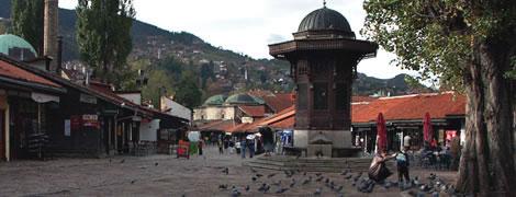 ESI Bosnia reports