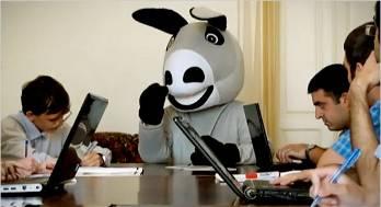 Donkey video